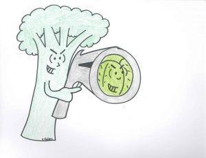 broccoli gun