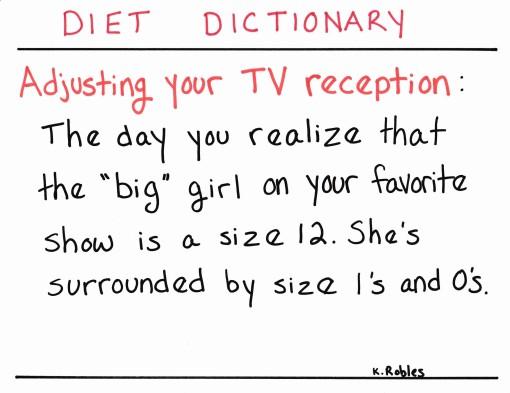 dd tv reception