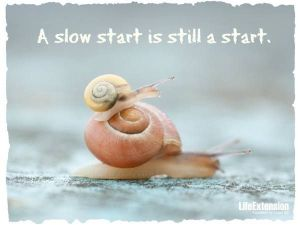 snail-quote
